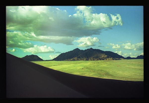 Nam desert s